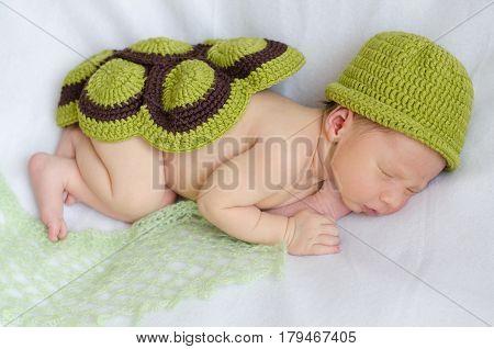 Newborn Cute Baby Baby In A Tortoise Costume