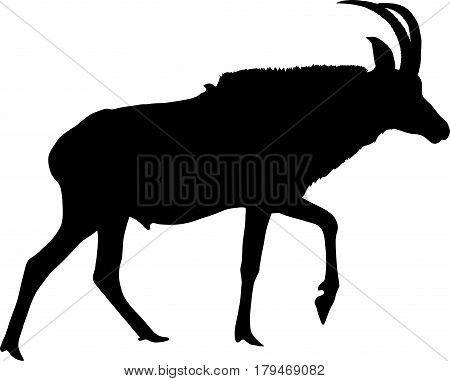 Silhouette of a walking horse antelope, hand drawn vector illustration isolated on white background