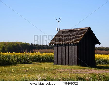 Small Rural Shack at Yellow Rape Field in Summer