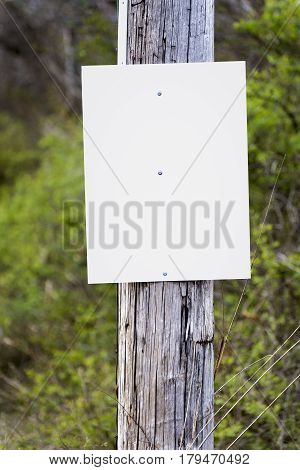 A blank sign on a telephone pole awaits your announcement ad or message.