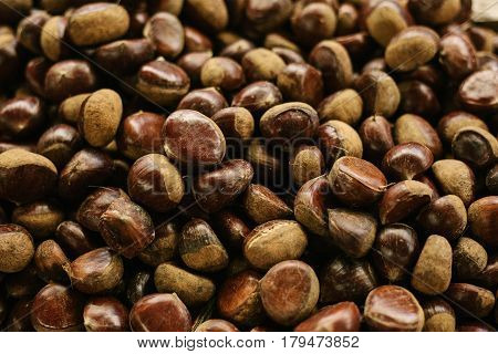 Delicious sweet chestnut background. A wholesome food rich in protein. Ingredients used in sports nutrition.