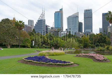 Sydney Royal Botanic Garden And Central Business District Cityscape