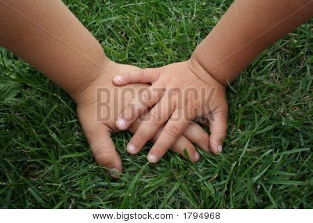 Childs Hands