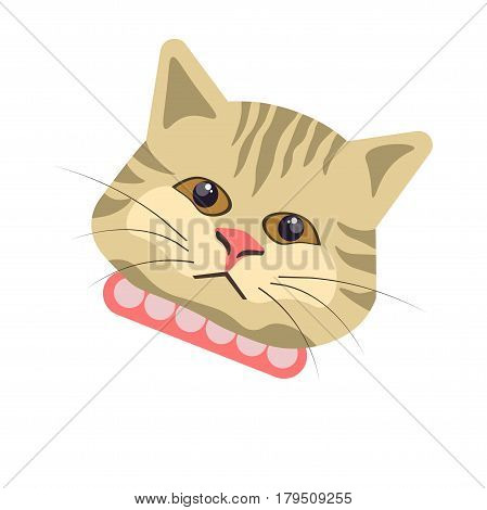 Egyptian mau cat close up portrait looking at you. Vector colorful illustration in flat design of striped domestic animal with hazel eyes, black whiskers and pink spotted decorative neck belt