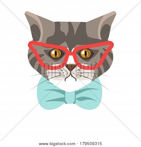 Siberian breed cat wearing red modern glasses and dressed in blue tie. Vector illustration in flat design of well-bred domestic animal head in grey color with stripe, hazel eyes and black whiskers