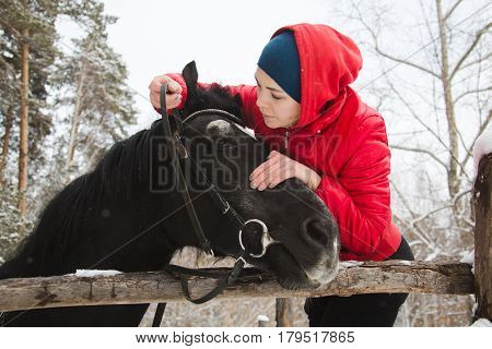 A rider putting a bridle on a crow horse in winter woods. Horizontal outdoors shot.