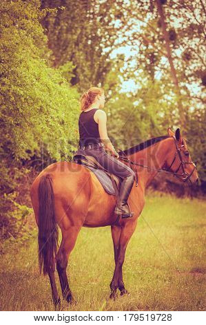Animal horsemanship concept. Young woman ridding on a horse through garden on sunny spring day view from back