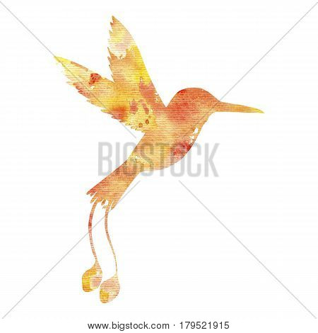 watercolor hummingbird silhouette, hand drawn songbird, isolated painting element