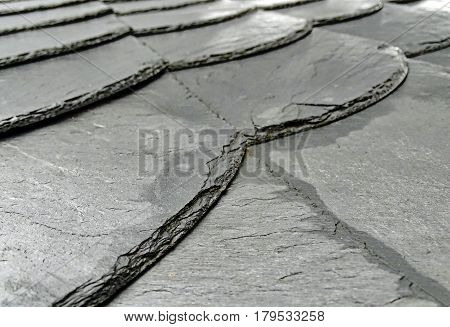 Moist slate on a roof, traditional roofing in Germany