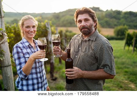 Happy people tasting red wine in vineyard