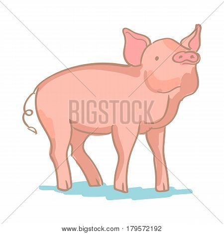Big pink pig upright on a white background. Realistic colored sketch vector illustration of farm pig.