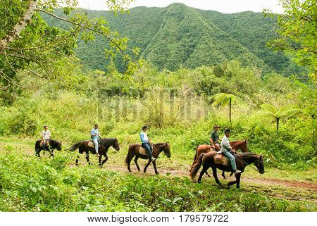 People Riding Horses At Grang Etang On La Reunion Island