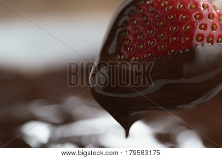 dipping strawberry into dark premium chocolate, with copy space