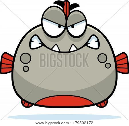Angry Little Piranha