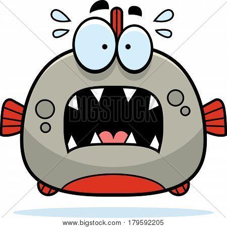 Scared Little Piranha