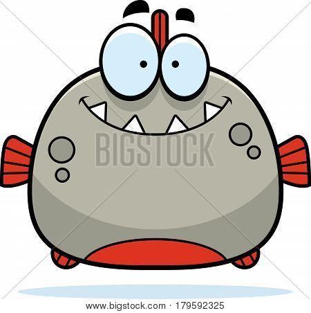 Smiling Little Piranha