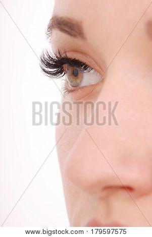 Beautiful woman eye with long eyelashes. Close up view of grey woman eye with beautiful brown shades. Studio shot