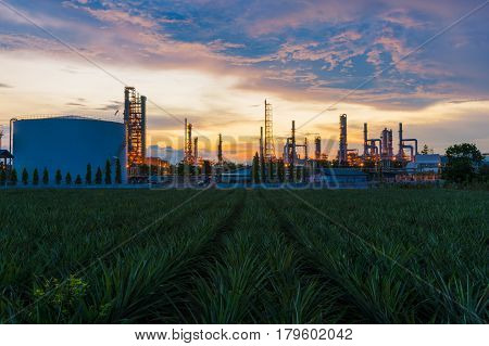 Sunrise scence of Oil Refinery factory industry with blue sky and clouds. Petrochemical plant Petroleum Industrial-plant.