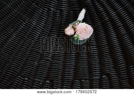 Beautiful boutonniere made from the light pink rose on the dark background