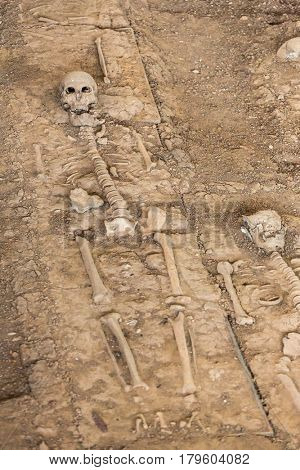 Remains of a Skeleton in Portuguese settlement n Ayutthaya Historical Park, Thailand