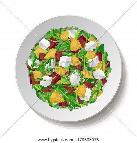 Vegetable salad with fresh tasty arugula rucola rocket green leaves red beet beetroot feta cheese orange citrus on plate isolated white background.Top view close-up colour square vector illustration.