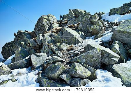 Stones on the top of Chopok in Low Tatras in Slovakia.