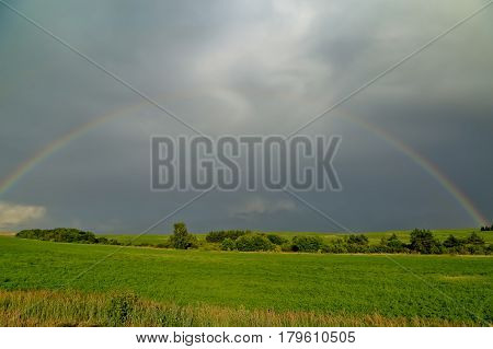 Rainbow over the meadow - summer landscape