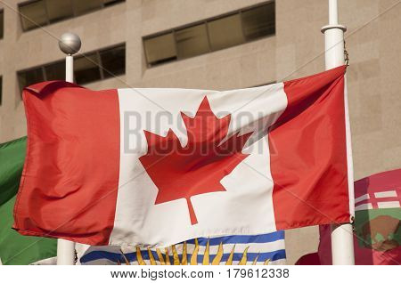 Canada flag blowing in city of Toronto, USA