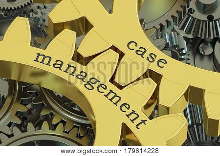 case management concept on the gearwheels 3D rendering
