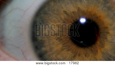 Eye Abstract Bkg