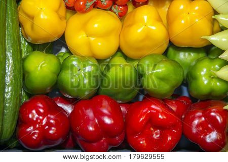 Freshly picked organic red green and yellow sweet peppers on market