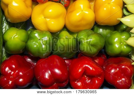 Colorful sweet bell peppers on retail market for sale