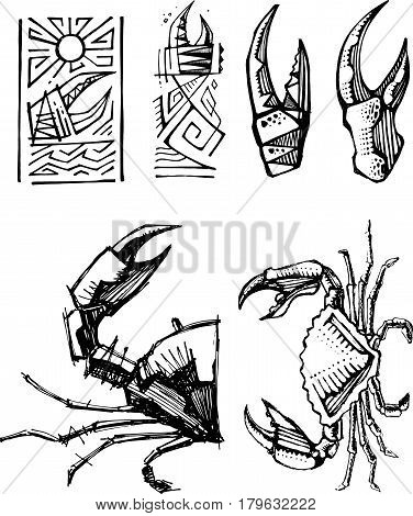 Hand drawn vector illustration or drawing of some crabs and pincers.