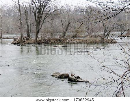 Landscape of Potomac River near Washington USA March 26 2017