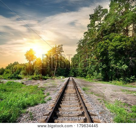 Railroad through the forest at the sunset