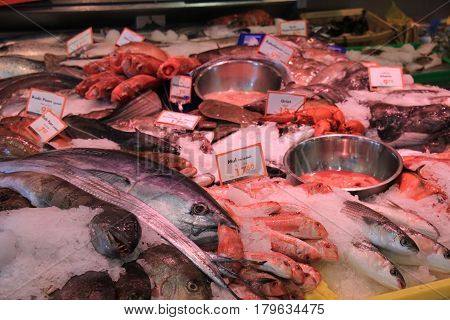Fresh sea fishes on crushed ice in a fish shop (tags: price and product information in Dutch)