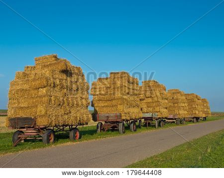 Row Of Trailers With Hay