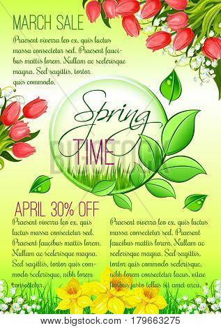 Spring Sale seasonal discount promo offer vector poster. Springtime holiday shopping design of tulip blossom bouquets and blooming daffodil petals or narcissus bunches on spring sunny grass meadow