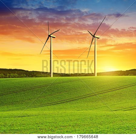 Rolling field with wind turbines at sunset.