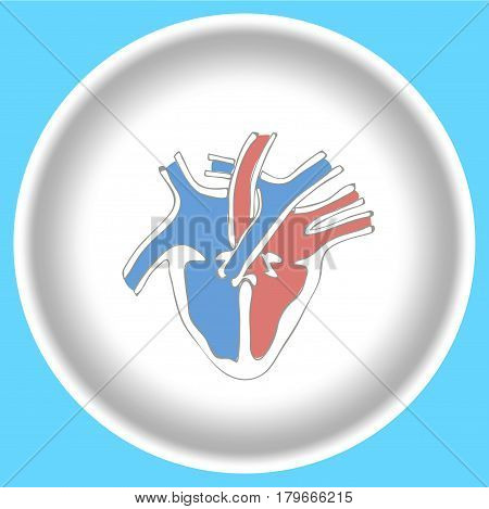 Icon Human heart anatomy on a white plate isolated on light blue background.
