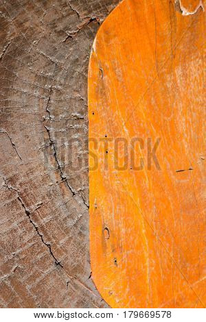Hard Wooden Surface Textured Background stock photo