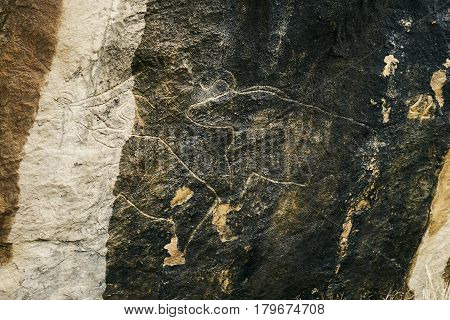 Qobustan Azerbaijan Baku - 22 March 2017 : Prehistorical petroglyphs at 22 March 2017 in Qobustan Azerbaijan. Rock paintings and Qobustan petroglyphs are listed by UNESCO as World Heritage.