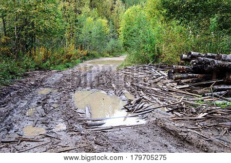 Country dirt road with large paddles and broken boards in the forest