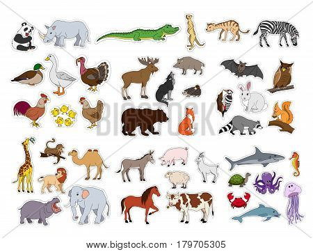 Big animals set, flat style illustration with animals collection isolated on white background. Stickers of Ocean Farm Forest Asian Australian African South american animals. Set of vector cartoon creatures from doffernt continents.