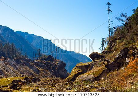 Fairy Mountain Landscape in Nepal Country Himalayas layers Hills on Background and Forest on Foreground Moss capped stones because of high Spring humidity