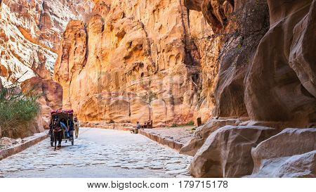Bedouin Carriage In Al Siq Pass To Petra Town