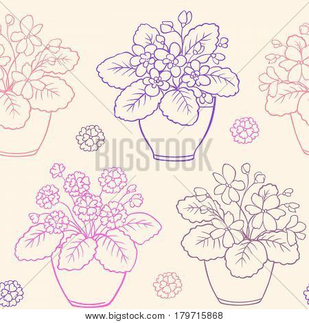 Vector seamless pattern with houseplants in flowerpot