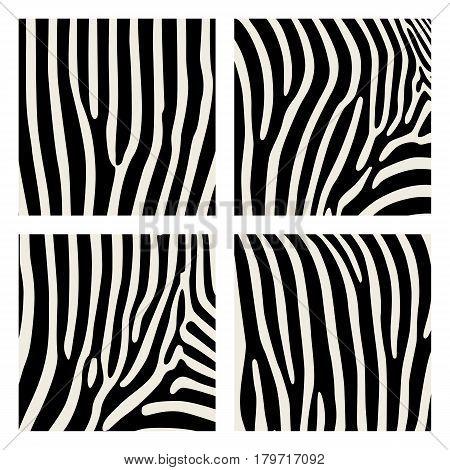Set of animal pattern. Imitation print of skin of zebra. Black stripes on gray background.