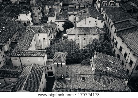 Lucca viewed from above in Italy.