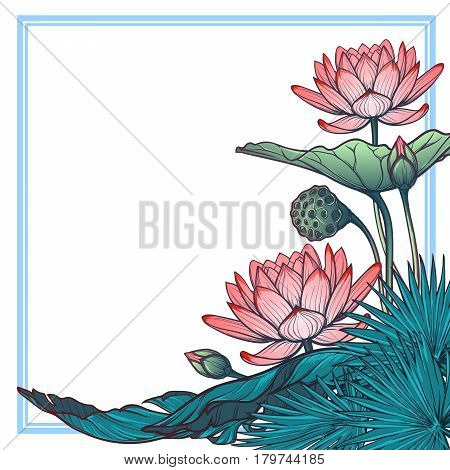 Lotus background. Floral decorative square frame. Water lilies palm tree and banana leaves arrenged in angular frame isolated on white background. EPS10 vector illustration.